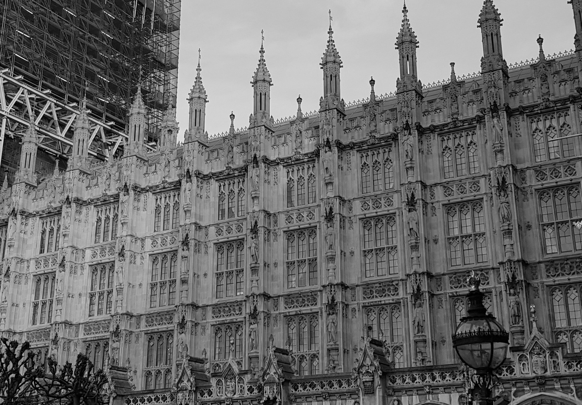 Palace of Westminster. Photo by me, Feb 2020