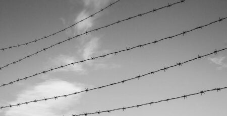 Photo of a barbed wire fence © Tomas Castelazo, www.tomascastelazo.com / Wikimedia Commons