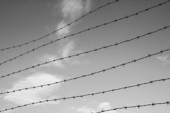 Photo of a barbed wire fence © Tomas Castelazo, www.tomascastelazo.com / Wikimedia Commons
